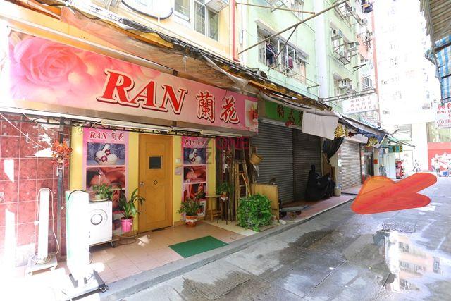 RAN 蘭花  -