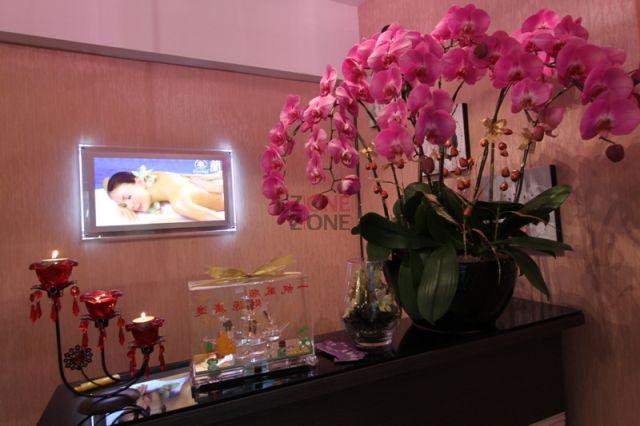 倩蘭 (Orchid Massage) (已結業) - 接待處,一進門即被優美的蘭花所吸引